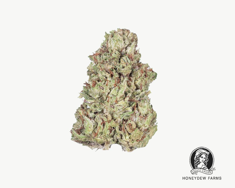 TriFi hybrid Strain by Honeydew Farms | Splitbud Deals